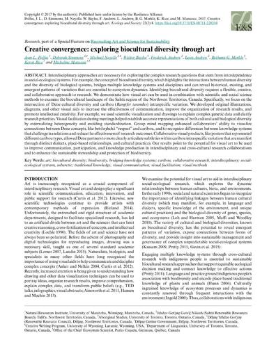 Polfus et al  2017 creative convergence