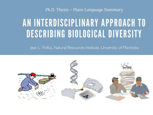 Polfus dissertation plainlanguage June2018